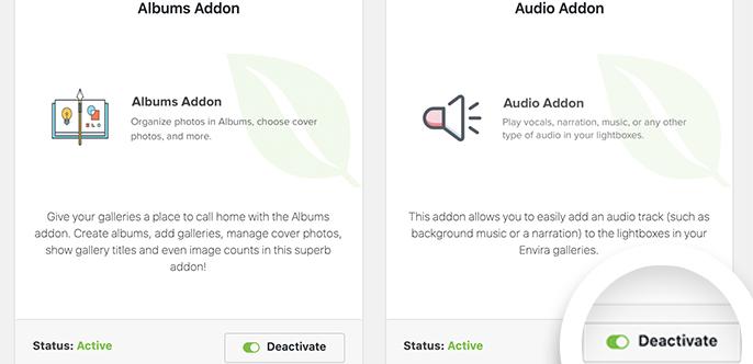 Audio Addon Envira Gallery Activate Audio Addon