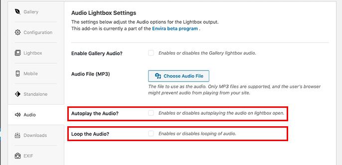 Autoplay or loop audio for Envira galleries