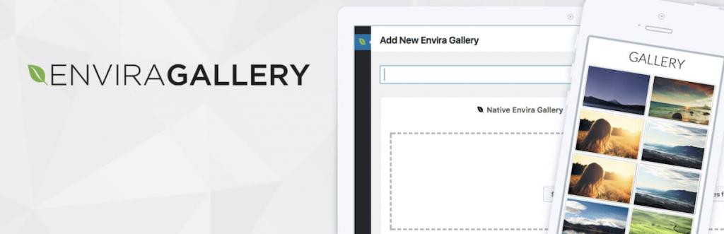 The Envira Gallery plugin.